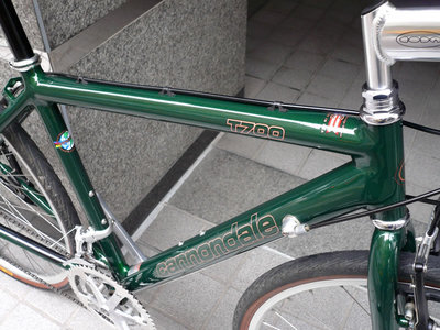 cannondale_t700_2.jpg