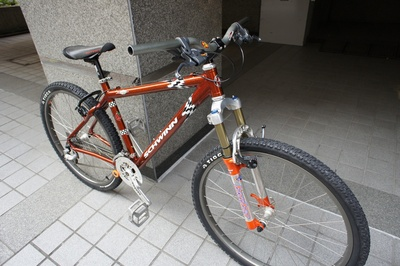 schwinn_homegrown_3.jpg