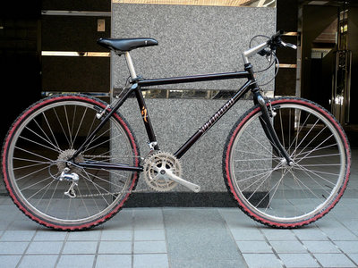 specialized1991s-works11.jpg